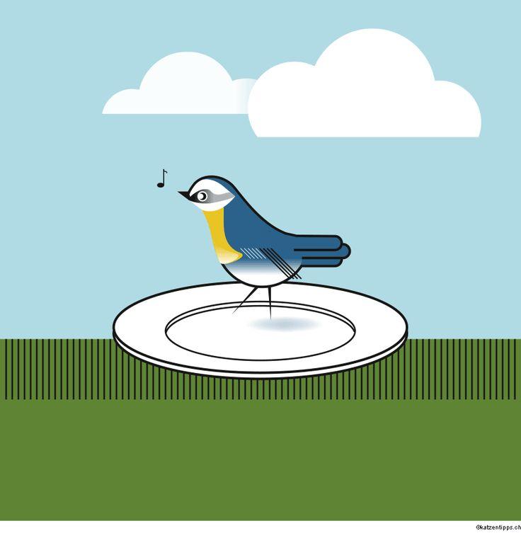 1000+ images about Vögel und andere Tiere im Garten on Pinterest.