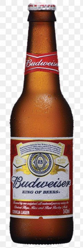 Brahma Beer Long Neck Pilsner Bohemia, PNG, 600x600px.