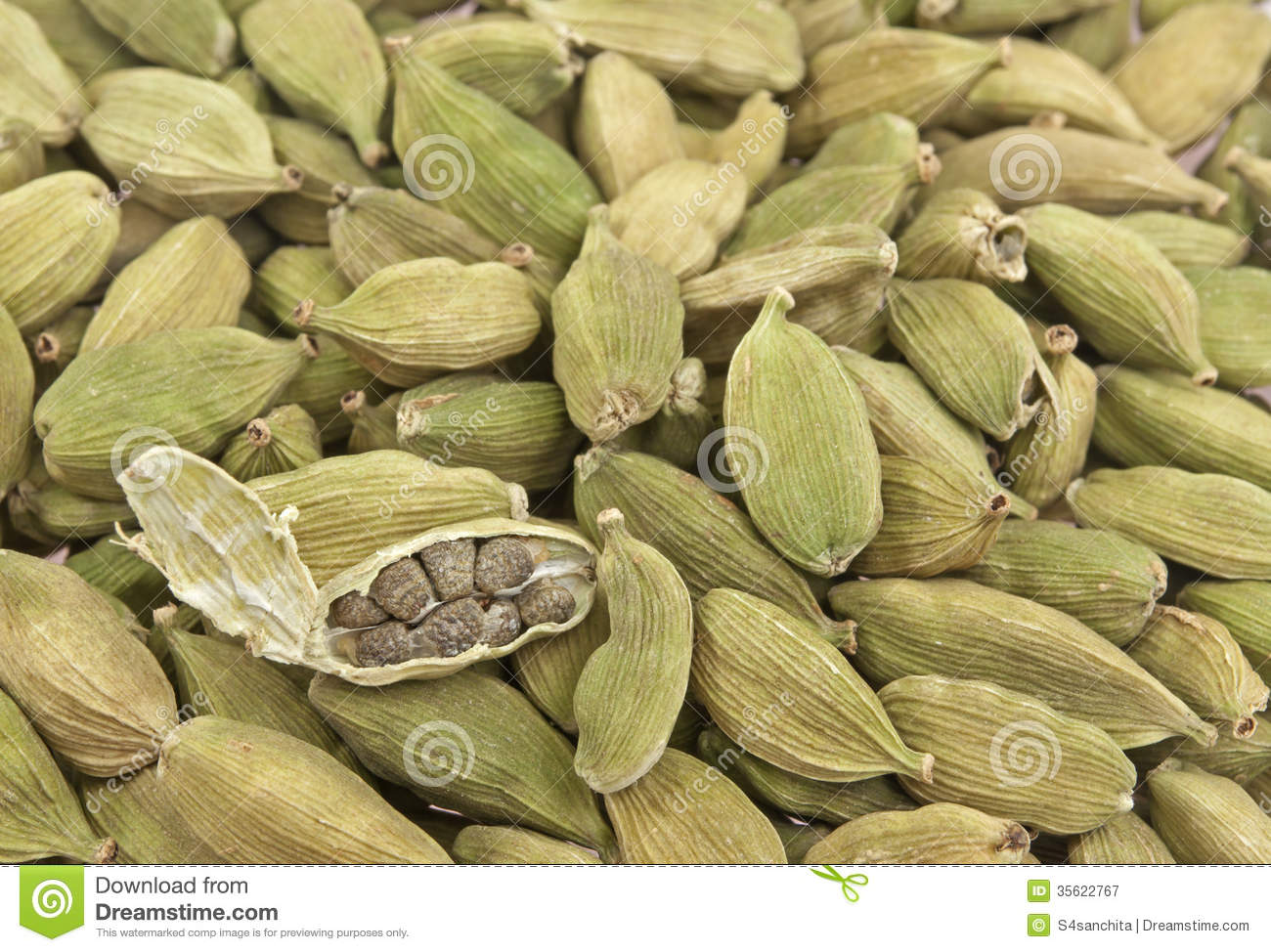 Pods Of White Cardamom Royalty Free Stock Photography.