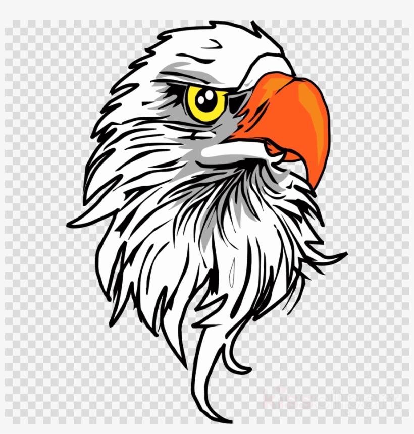 Download Eagle Head Png Clipart Bald Eagle Clip Art.