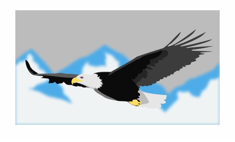 Steller's Sea Eagle Clipart Transparent.