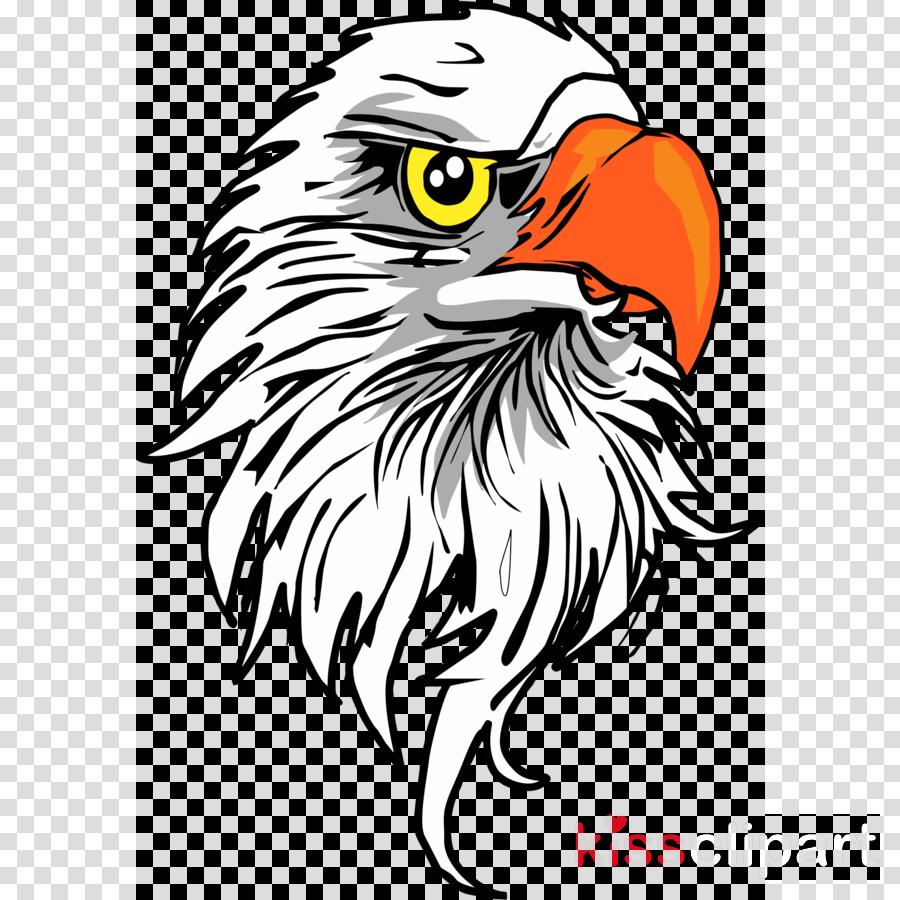 Download Download Eagle Head Png Clipart Bald Eagle Clip Art.