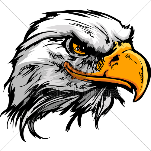 Graphic Head Of A Bald Eagle Mascot Vector Illustration · GL Stock.