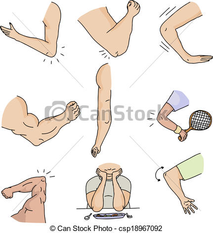 Elbows Illustrations and Clip Art. 4,945 Elbows royalty free.