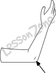 Elbow Clipart.