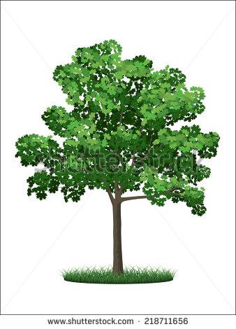 Elder Tree Clipart Free.