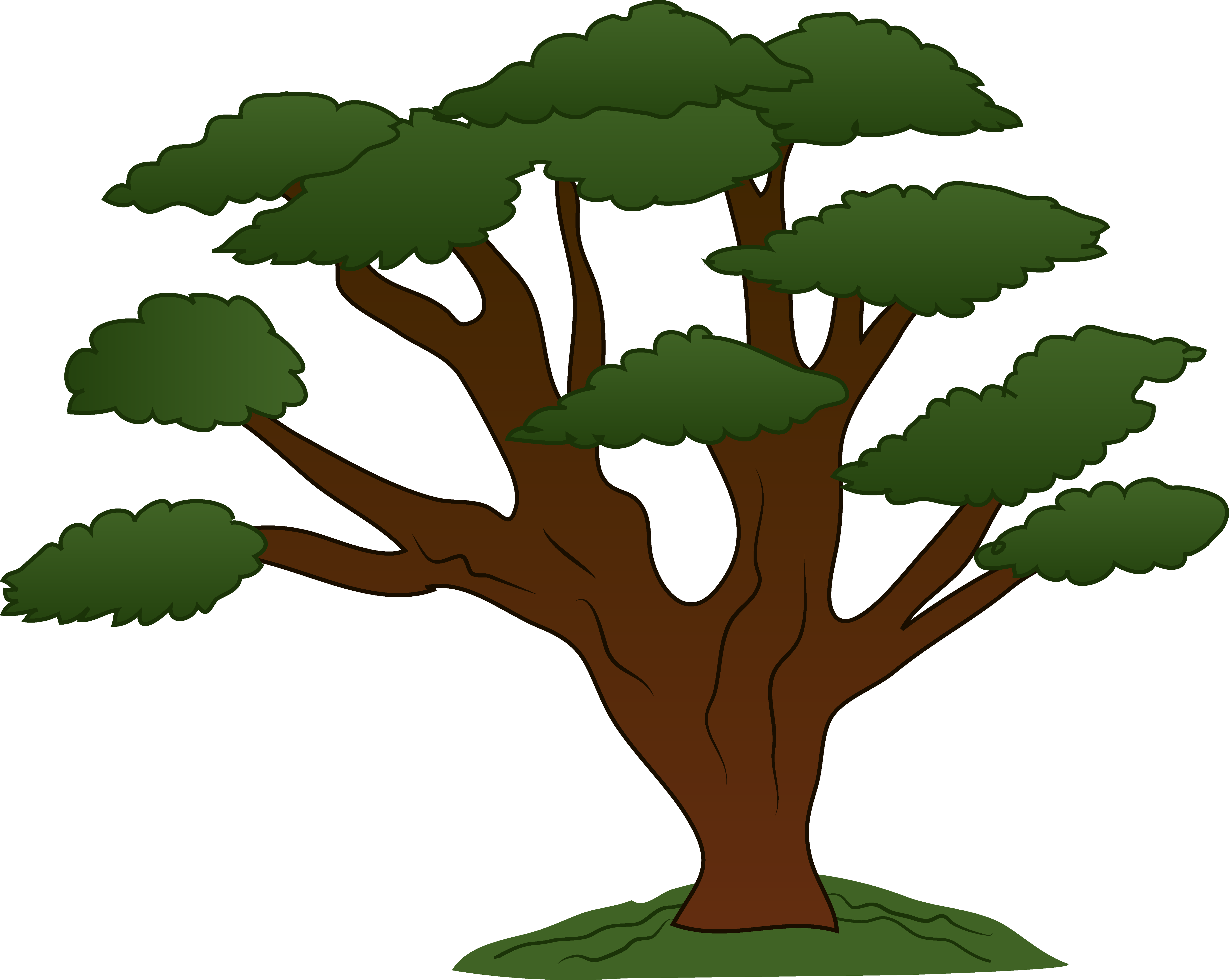 Oak tree forest clipart backgrounds.