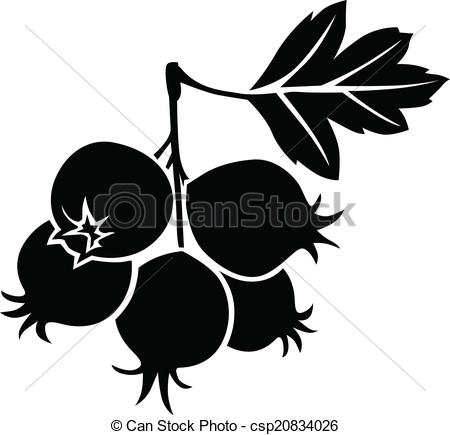 Elderberry Vector Clip Art Royalty Free. 59 Elderberry clipart.