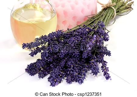 Stock Photography of Lavender Oil.
