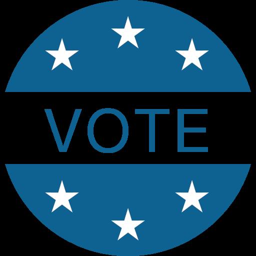 election vote voter voting icon.