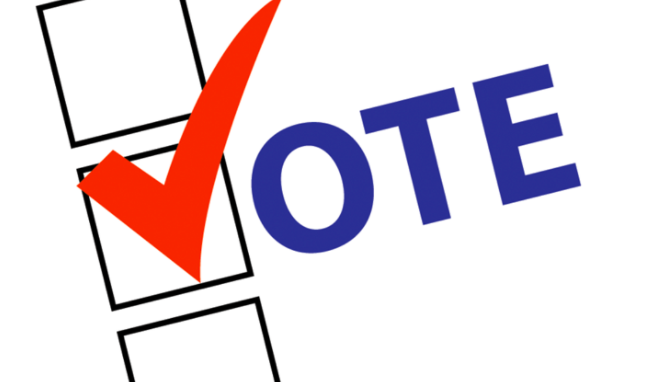 April 2 Election Questionnaire: Brussels Town Supervisor.