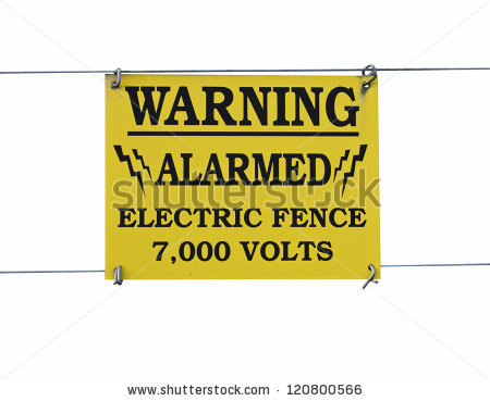 Warning Sign High Voltage Electric Fence Stock Photo 120800566.