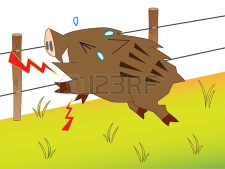 190 Electric Fence Stock Illustrations, Cliparts And Royalty Free.