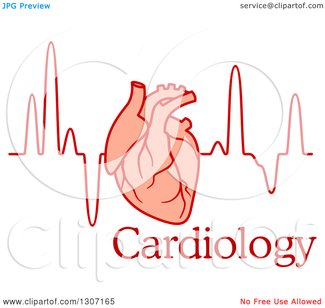 Clipart of a Human Heart over an Electrocardiogram Graph and Text.