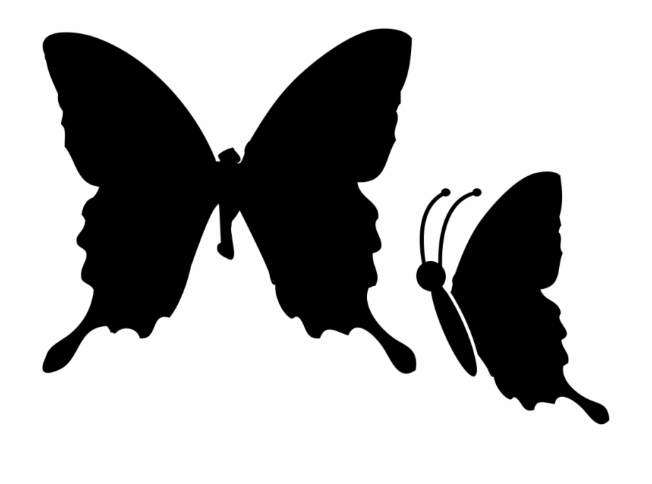 Image Transparent Stock Butterflies Svg Elegant.