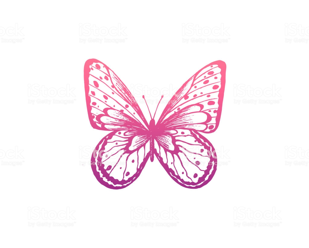 Butterfly Vector Illustration Elegant Butterfly Logo For Feminine.