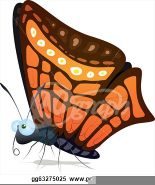 Elegant Butterfly Clipart.
