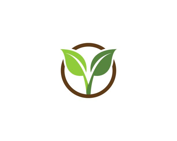 ecology logo nature element vector.