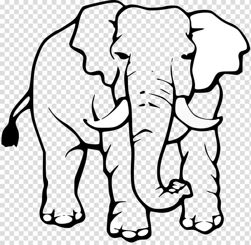 Asian elephant Black and white White elephant , Africa White.