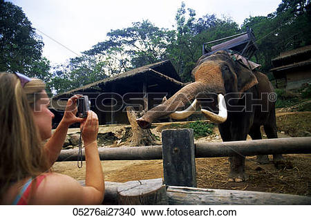 Stock Photography of Thailand,Chiang Mai,Mae Sa Elephant Camp.