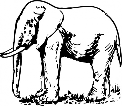 Elephant Drawing clip art clip arts, free clipart.