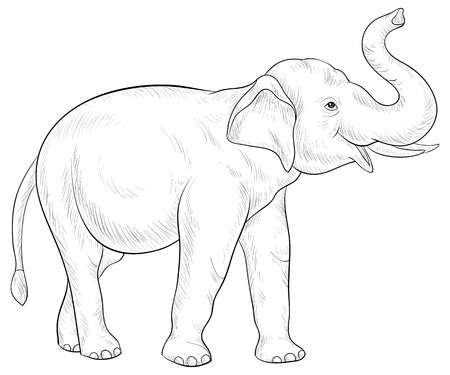 2,043 Line Drawing Elephant Stock Illustrations, Cliparts And.