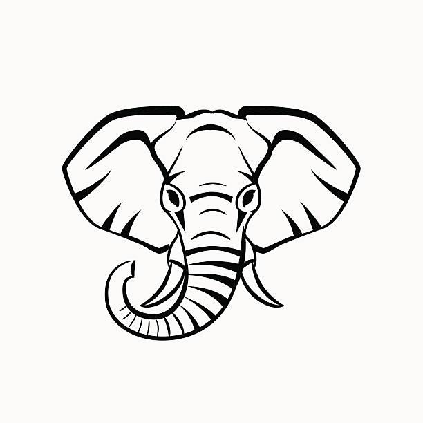 Best Elephant Face Illustrations, Royalty.