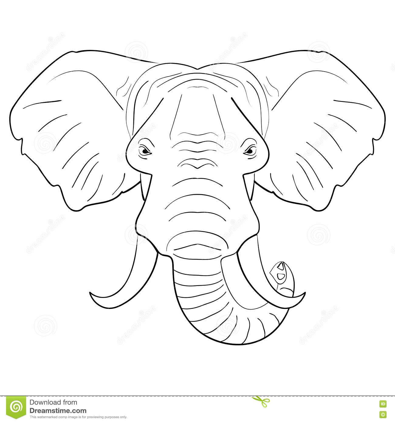 Black White Elephant Face Drawn Ink Sketch Stock Illustrations.
