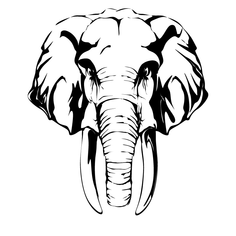 Elephant head clipart 20 free Cliparts | Download images ...