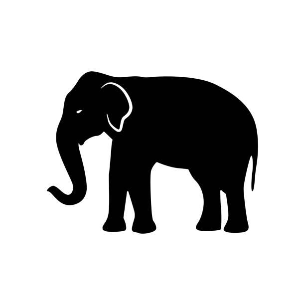 Best Elephant Illustrations, Royalty.
