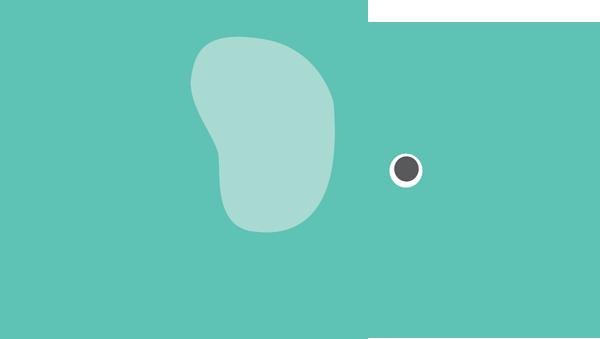 Elephants on emaze.