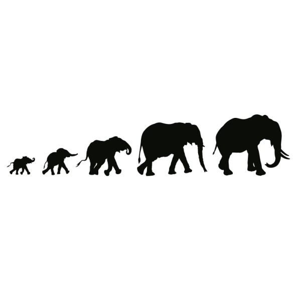 elephant parade wall tattoo #silhouette #animal #digistamp.