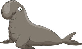 Elephant seal clipart 20 free Cliparts   Download images ...