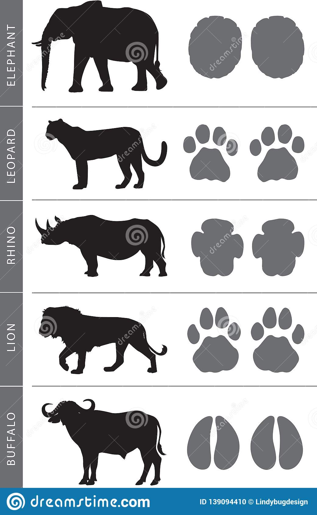 Africa`s Big Five Footprints Stock Vector.
