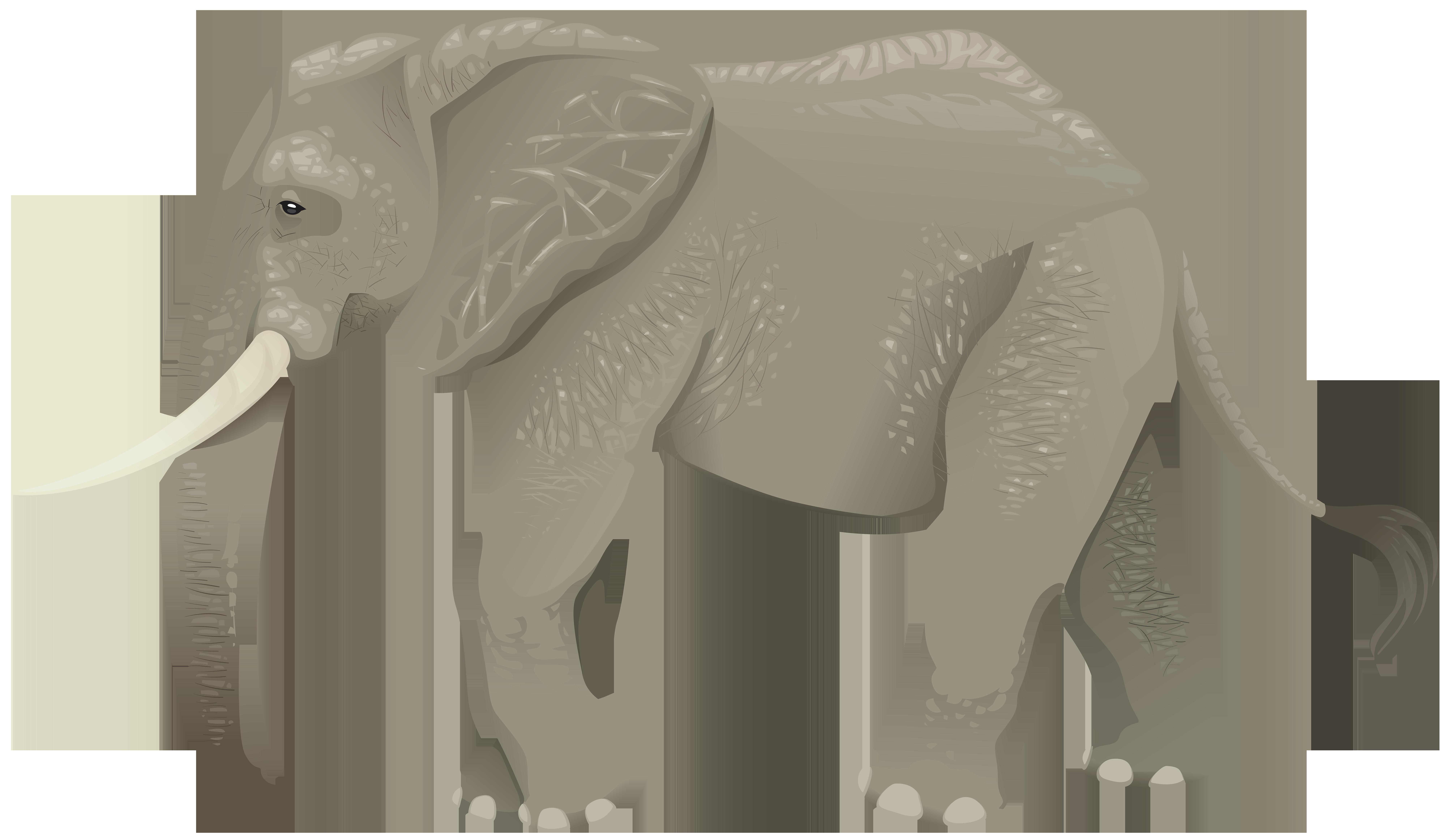 Elephant Transparent PNG Clip Art Image.