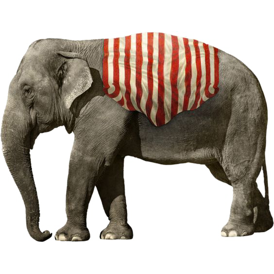 Elephant PNG Images Transparent Free Download.
