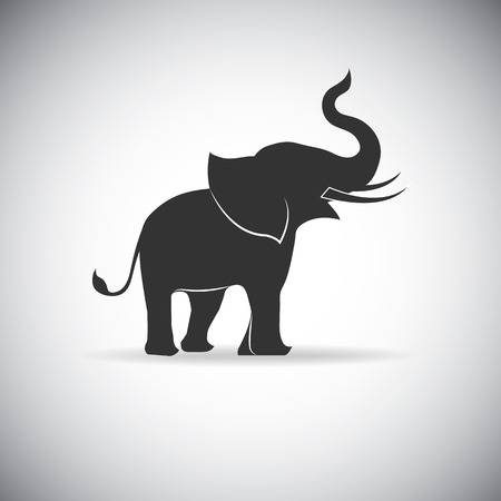 8,640 Elephant Trunk Stock Vector Illustration And Royalty Free.
