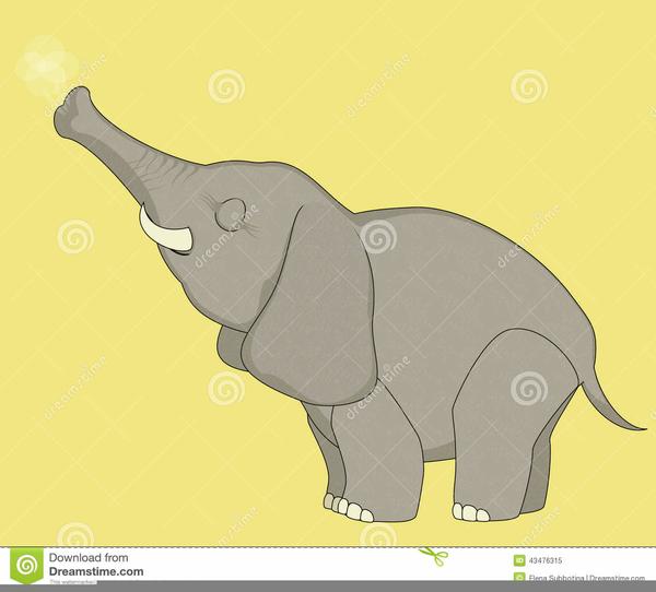Clipart Elephant Trunk.