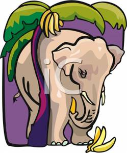 Free Clipart Image: An Elephant Eating Bananas In the Jungle.