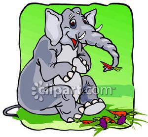 Elephant Eating Vegetables.