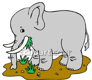 Elephant eating clipart.