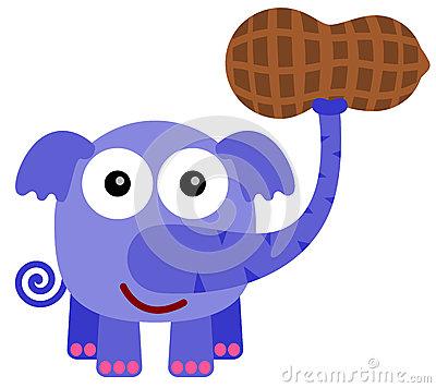 Elephant with peanut clipart.