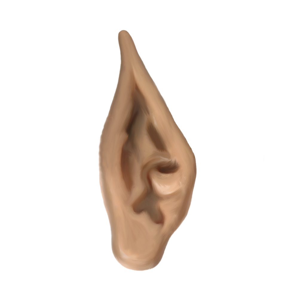 Elf Ears PNG Transparent Elf Ears.PNG Images..