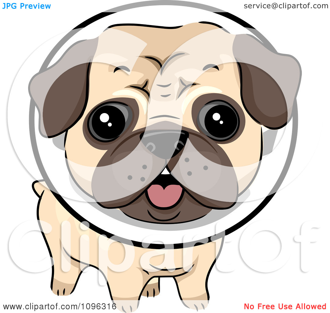 Dog wearing e collar clipart.