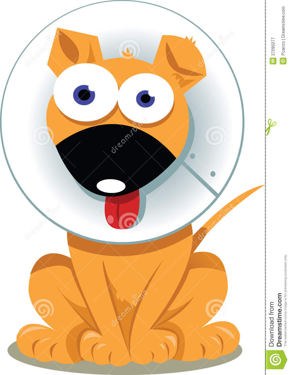 Funny Dog With Elizabethan Collar Royalty Free Stock Photography.