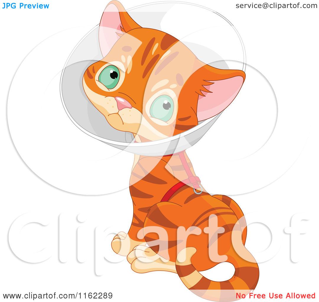Cartoon of a Cute Ginger Kitten Wearing a Cone Elizabethan Collar.