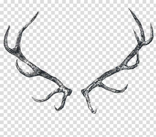 Reindeer Elk Antler Horn, Antler transparent background PNG clipart.