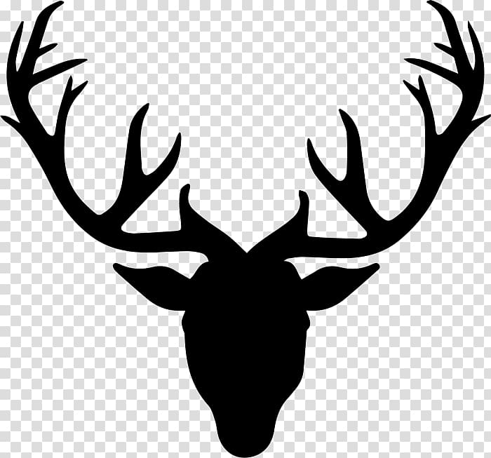 Roe deer Drawing Antler, deer transparent background PNG.
