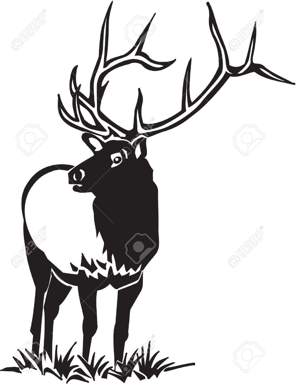Image result for black and white bull elk clip art.