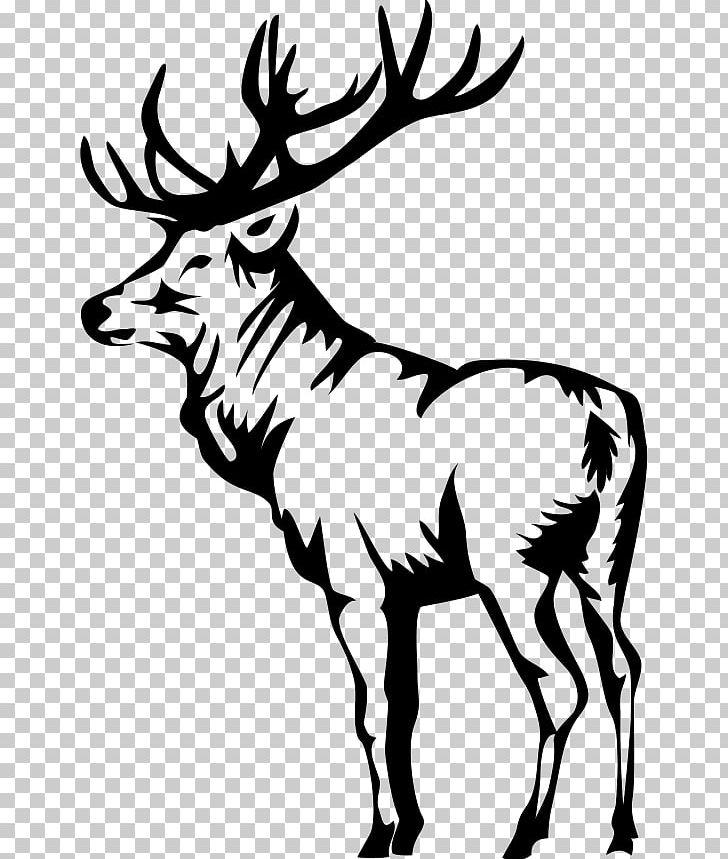 Elk Deer PNG, Clipart, Animals, Antler, Black And White.